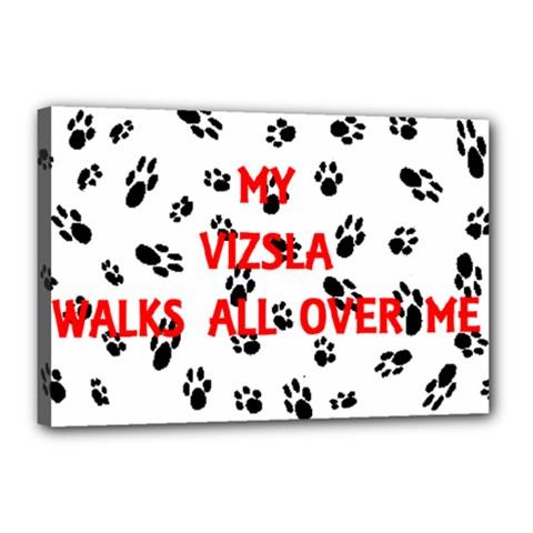 My Vizsla Walks On Me  Canvas 18  x 12
