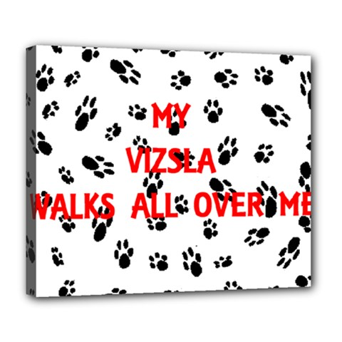My Vizsla Walks On Me  Deluxe Canvas 24  x 20