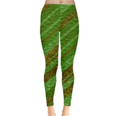 Stripes Course Texture Background Leggings