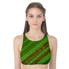 Stripes Course Texture Background Tank Bikini Top