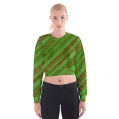 Stripes Course Texture Background Women s Cropped Sweatshirt