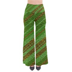 Stripes Course Texture Background Pants
