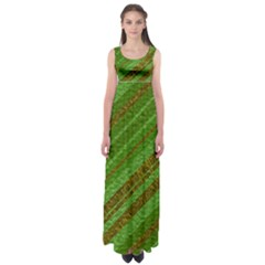 Stripes Course Texture Background Empire Waist Maxi Dress