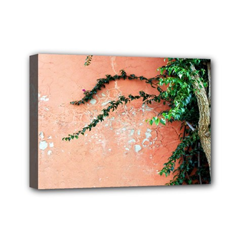 Background Stone Wall Pink Tree Mini Canvas 7  x 5