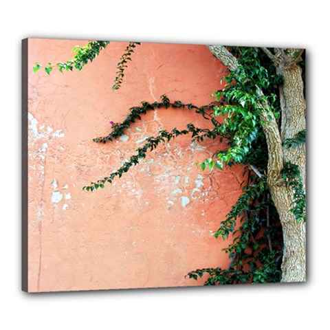 Background Stone Wall Pink Tree Canvas 24  x 20