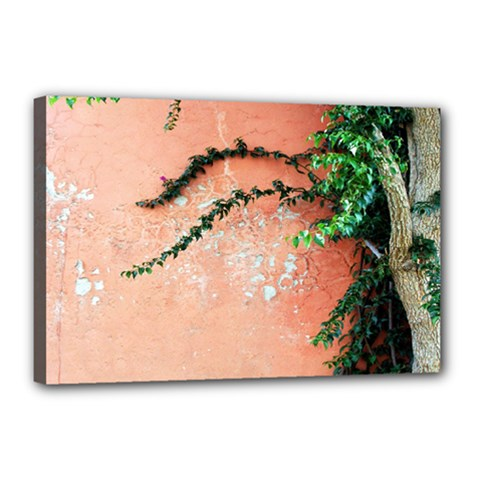 Background Stone Wall Pink Tree Canvas 18  x 12