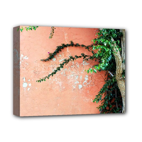 Background Stone Wall Pink Tree Deluxe Canvas 14  x 11