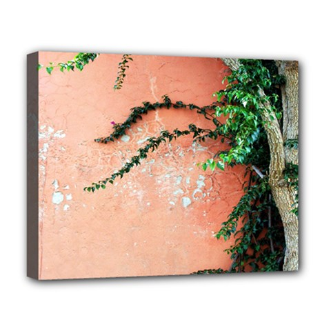 Background Stone Wall Pink Tree Deluxe Canvas 20  x 16