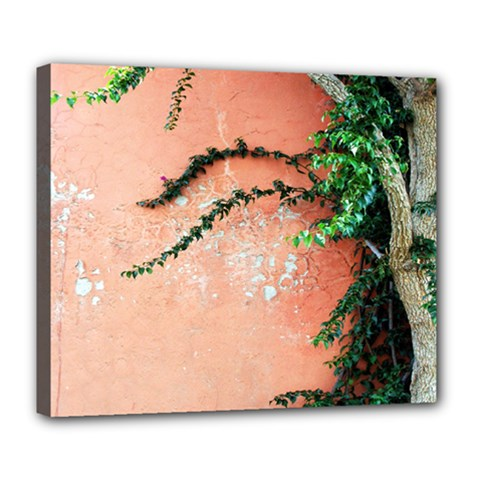 Background Stone Wall Pink Tree Deluxe Canvas 24  x 20