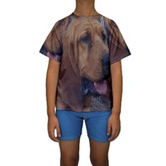 Bloodhound  Kids  Short Sleeve Swimwear