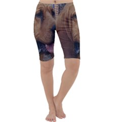 Bloodhound  Cropped Leggings
