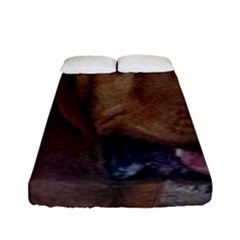 Bloodhound  Fitted Sheet (Full/ Double Size)