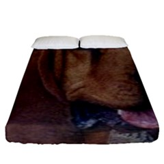 Bloodhound  Fitted Sheet (Queen Size)