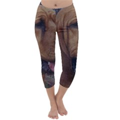 Bloodhound  Capri Winter Leggings