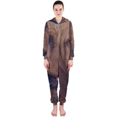 Bloodhound  Hooded Jumpsuit (Ladies)