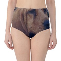 Bloodhound  High-Waist Bikini Bottoms