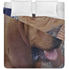 Bloodhound  Duvet Cover Double Side (King Size)