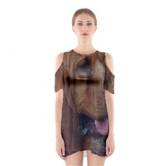Bloodhound  Cutout Shoulder Dress