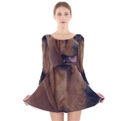 Bloodhound  Long Sleeve Velvet Skater Dress
