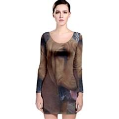 Bloodhound  Long Sleeve Velvet Bodycon Dress