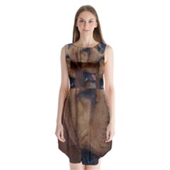 Bloodhound  Sleeveless Chiffon Dress