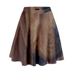 Bloodhound  High Waist Skirt