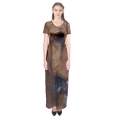 Bloodhound  Short Sleeve Maxi Dress