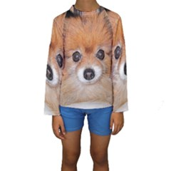 Pomeranian Kids  Long Sleeve Swimwear