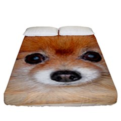 Pomeranian Fitted Sheet (King Size)