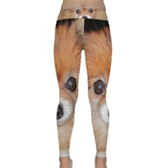 Pomeranian Classic Yoga Leggings
