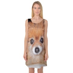 Pomeranian Sleeveless Satin Nightdress