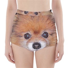 Pomeranian High-Waisted Bikini Bottoms