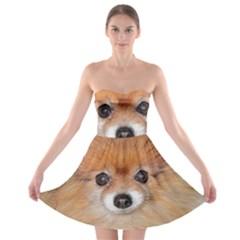 Pomeranian Strapless Bra Top Dress