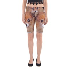 Pomeranian Yoga Cropped Leggings