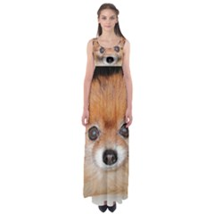 Pomeranian Empire Waist Maxi Dress