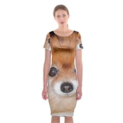 Pomeranian Classic Short Sleeve Midi Dress
