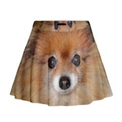 Pomeranian Mini Flare Skirt