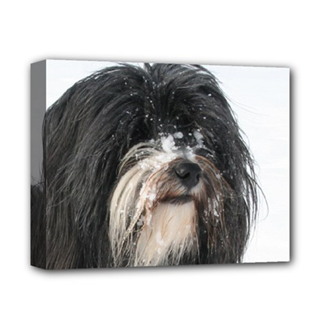 Tibet Terrier  Deluxe Canvas 14  x 11