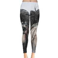 Tibet Terrier  Leggings