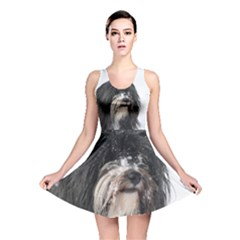 Tibet Terrier  Reversible Skater Dress