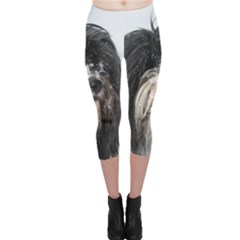 Tibet Terrier  Capri Leggings