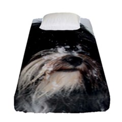 Tibet Terrier  Fitted Sheet (Single Size)