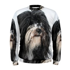 Tibet Terrier  Men s Sweatshirt