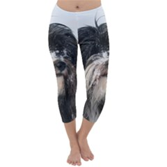 Tibet Terrier  Capri Winter Leggings