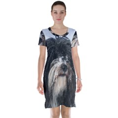 Tibet Terrier  Short Sleeve Nightdress