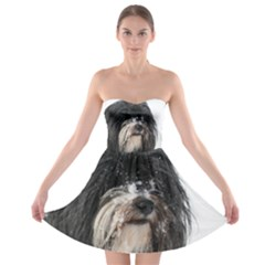 Tibet Terrier  Strapless Bra Top Dress