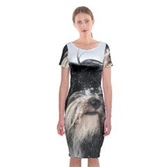 Tibet Terrier  Classic Short Sleeve Midi Dress