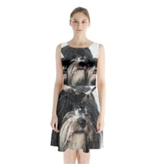 Tibet Terrier  Sleeveless Chiffon Waist Tie Dress