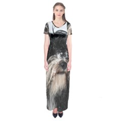 Tibet Terrier  Short Sleeve Maxi Dress