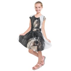 Tibet Terrier  Kids  Short Sleeve Dress